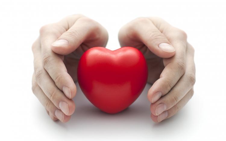 Szívünk Napja: A házigazda, Lacza Zsombor